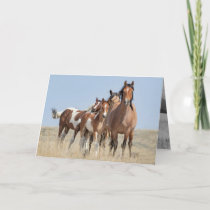 Wild Horse Family Leans Wild Horse Greeting Card