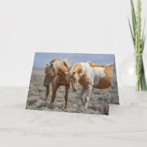 Wild Horse Father and Son Wild Horse Greeting Card