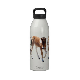 Wild Horse, Gifts, colt, baby Reusable Water Bottle
