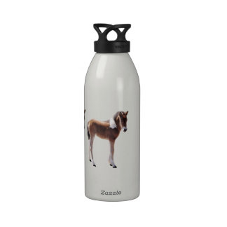Wild horse, gifts, colt, baby water bottles