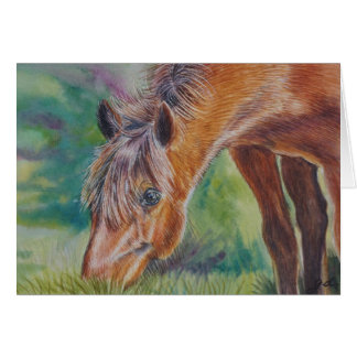 Wild Horse Grazing Stationery Note Card