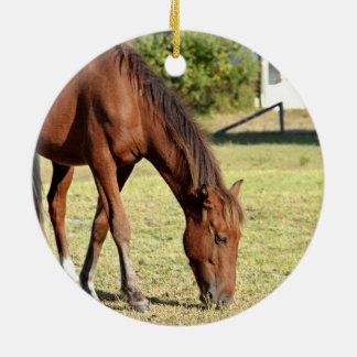 Wild Horse in Corolla Ceramic Ornament