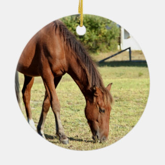 Wild Horse in Corolla Double-Sided Ceramic Round Christmas Ornament