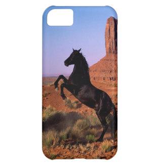 Wild Horse Monument Valley iPhone 5C Cases