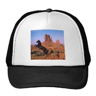 Wild Horse Monument Valley Trucker Hat
