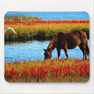 Wild horse mouse pad