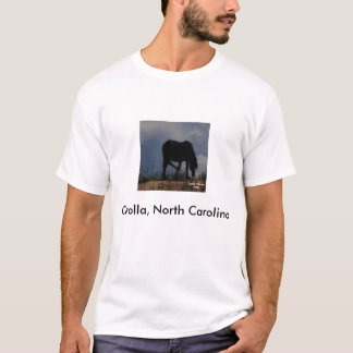 Wild Horse of Corolla, North Carolina T-shirt