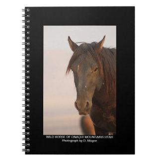 WILD HORSE OF ONAQUI MOUNTAINS OF UTAH NOTEBOOK