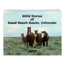 Wild Horse of Sand Wash Basin Calendar