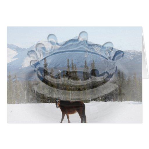 Wild Horse on Alaska Highway Card