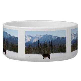 Wild Horse on Alaska Highway Pet Food Bowls
