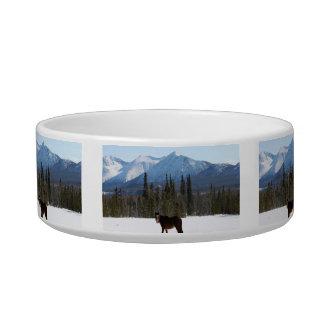 Wild Horse on Alaska Highway Pet Water Bowls