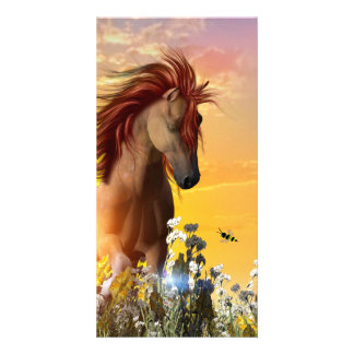 Wild horse playing on the meadow personalized photo card