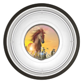 Wild horse playing on the meadow pet bowl