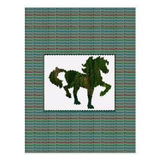 Wild Horse Prancing Postcard