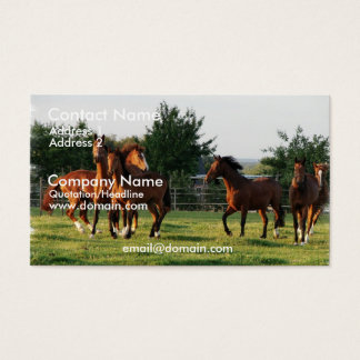 Wild Horse Round Up Business Card