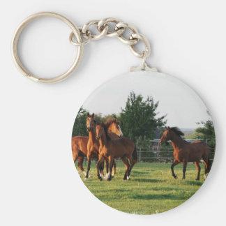 Wild Horse Roundup Keychain
