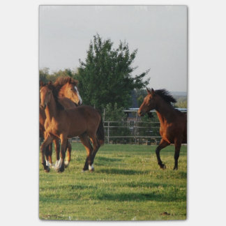 Wild Horse Roundup Post-it Notes