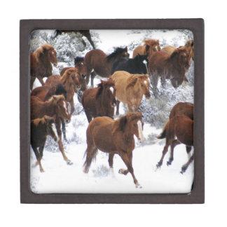 Wild Horse Running on Snow Keepsake Box