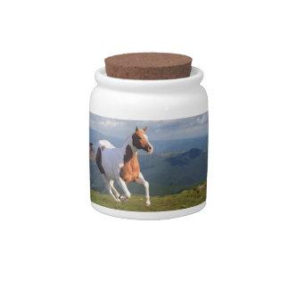Wild Horse Spirit Candy Dishes