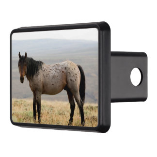 Wild Horse Trailer Hitch Cover