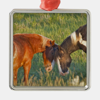 Wild Horses at Theodore Roosevelt National 2 Metal Ornament