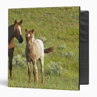 Wild Horses at Theodore Roosevelt National Binder