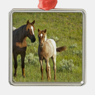 Wild Horses at Theodore Roosevelt National Metal Ornament