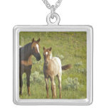 Wild Horses at Theodore Roosevelt National Personalized Necklace