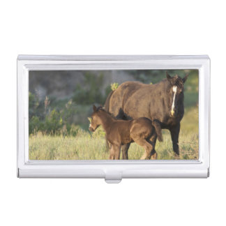 Wild Horses at Theodore Roosevelt National Park Business Card Case