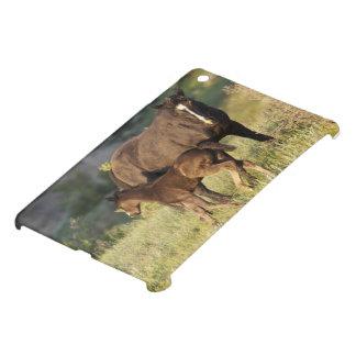 Wild Horses at Theodore Roosevelt National Park iPad Mini Covers