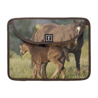 Wild Horses at Theodore Roosevelt National Park MacBook Pro Sleeve