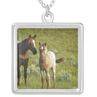 Wild Horses at Theodore Roosevelt National Square Pendant Necklace