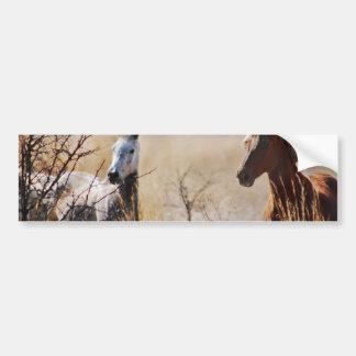 Wild Horses Bumper Stickers