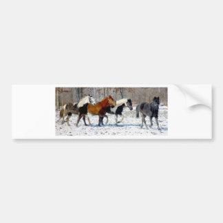 Wild Horses Car Bumper Sticker