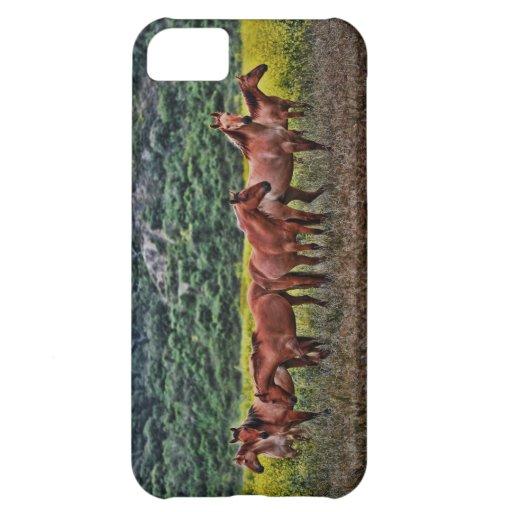 Wild Horses Case For iPhone 5C