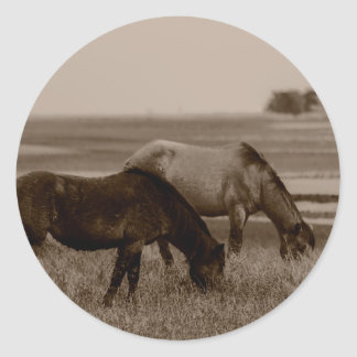 Wild Horses Classic Round Sticker
