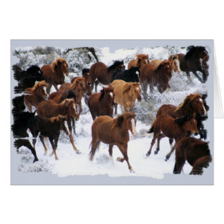 Wild Horses Driven Greeting Card