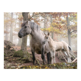 Wild Horses Custom Flyer