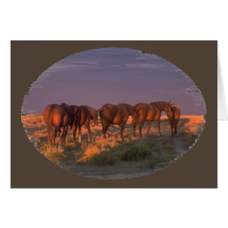 Wild Horses Heading Into the Night Greeting Card