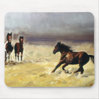 Wild horses/horses Digs them salvaxes/Wild Mouse Pad