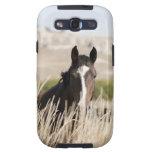 Wild horses in South Dakota Galaxy S3 Cover