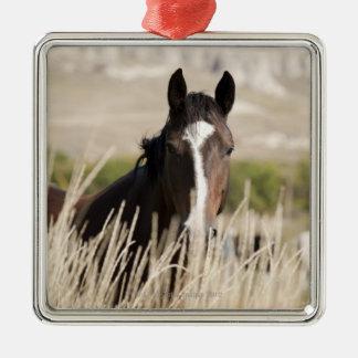 Wild horses in South Dakota Metal Ornament