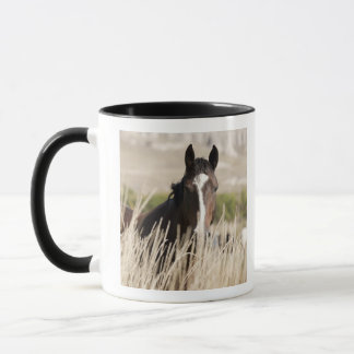 Wild horses in South Dakota Mug