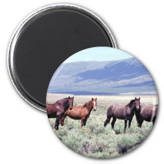 Wild Horses Refrigerator Magnets