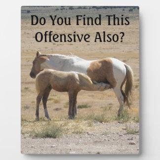 Wild Horses Nursing Plaque