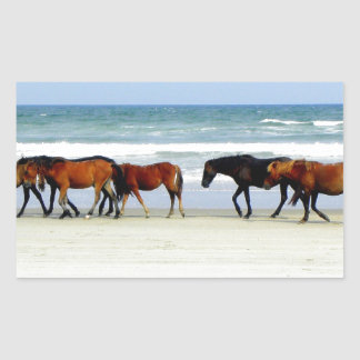 Wild Horses OBX NC jpg Rectangular Sticker