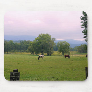 Wild Horses of Cades Cove Mouse Pads