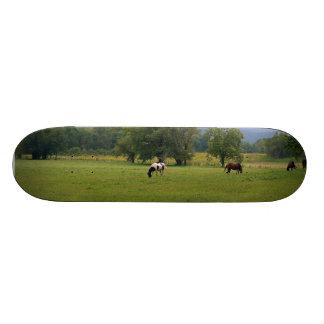 Wild Horses of Cades Cove Skateboards