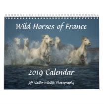 Wild Horses of France - 2019 Wall Calendar